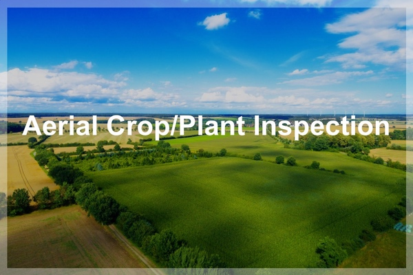 Agricultural Inspections